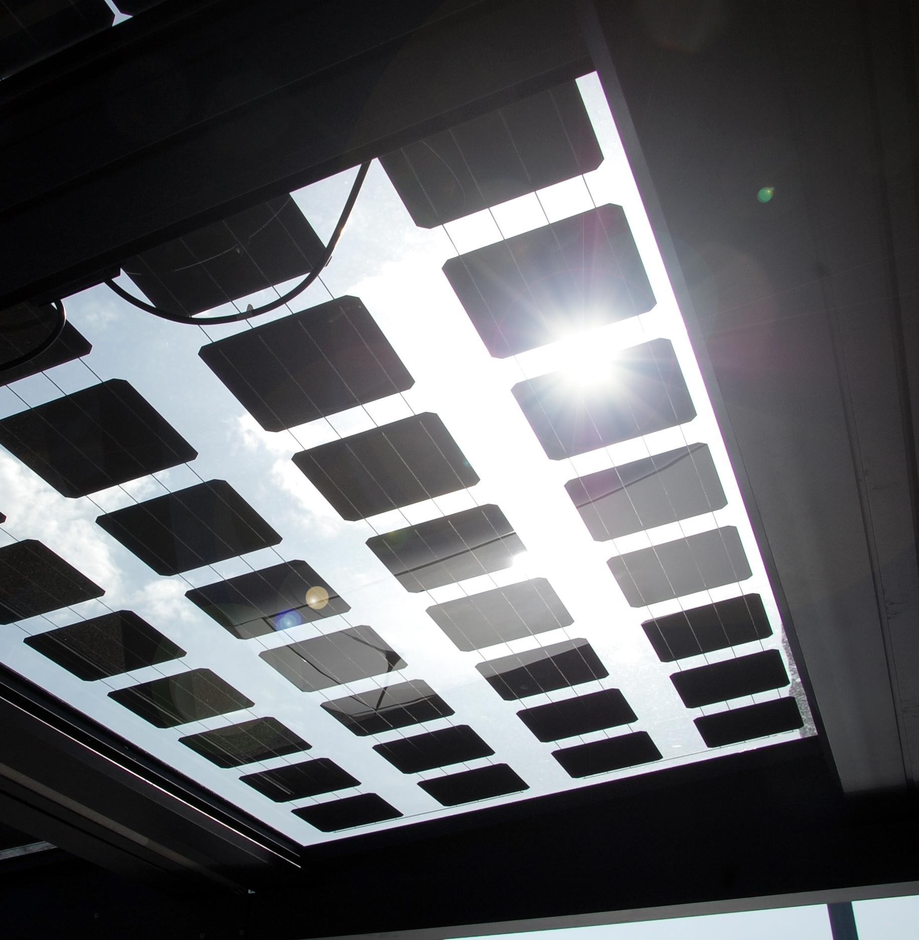 modules photovoltaïques laissant passer la lumière